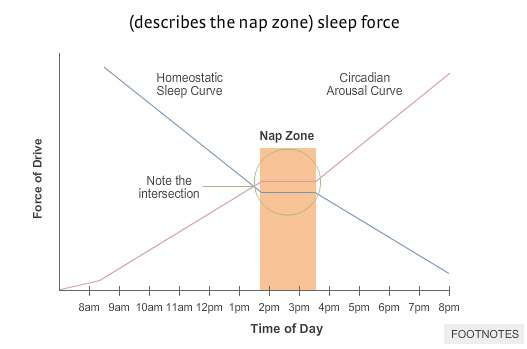 optimal-nap-timing-during-the-day
